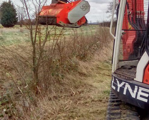 Hedge Cutting Newark